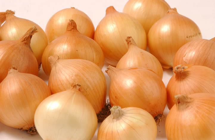 wildeklawer onions
